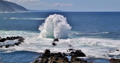 Ocean energy - Wave