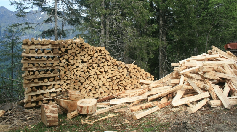 Wood Biomass Energy ~ Biomass production needs to become sustainable our energy